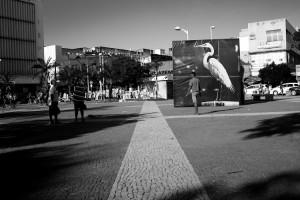 Galba Nogueira exibe fotografias/intervenção no Theatro José de Alencar