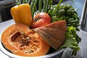 Senac RioMar realiza cursos rápidos de Gastronomia em dezembro