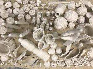 Parque Ibirapuera ganha obra que alerta para a importância da preservação dos recifes de corais