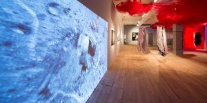 """Exposição """"Una(S)+"""", reúne obras de 15 artistas brasileiras e argentinas no Oi Futuro"""