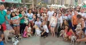 2ª Cãomiada pede hospital veterinário público em Fortaleza