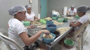 Inscrições abertas para o 3º Laboratório de Criação em Cultura Alimentar e Gastronomia Social da  Escola de Gastronomia Social Ivens Dias Branco